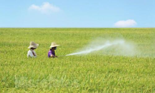 农药化肥追溯